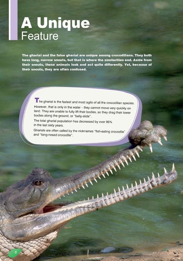 Gharial Crocodiles. Reader + APP